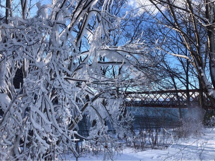 冬の山線鉄橋